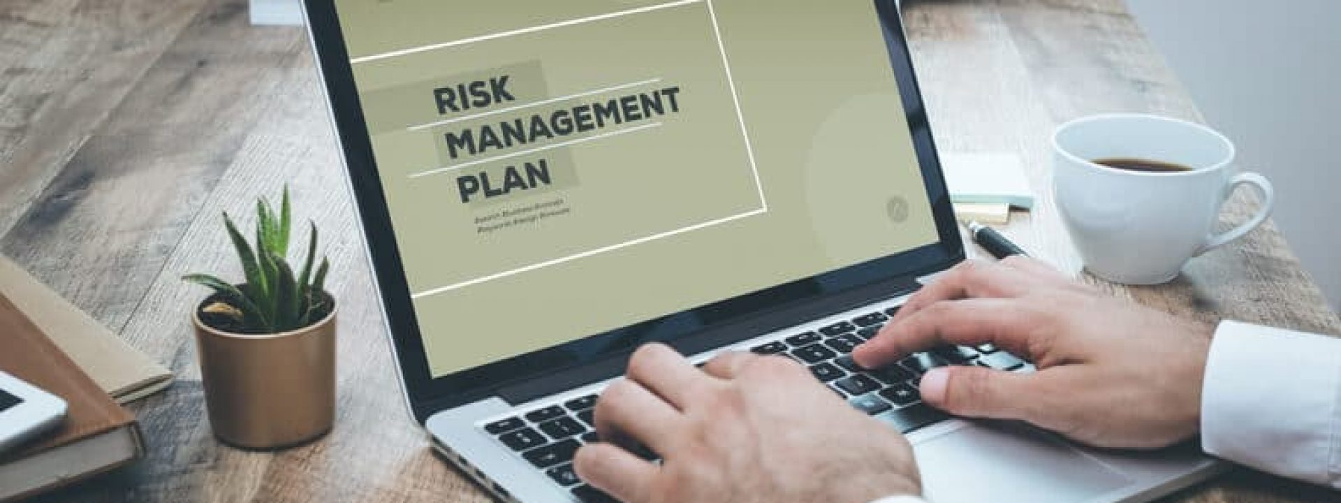 RISK MANAGEMENT PLAN CONCEPT
